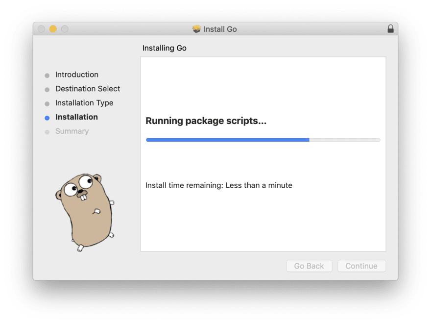 golang installation step3