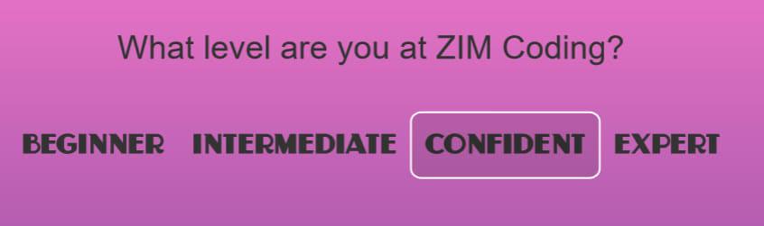 ZIM Selector Component