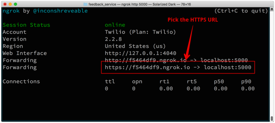 The ngrok window shows two URLs you can use, pick the HTTPS one.