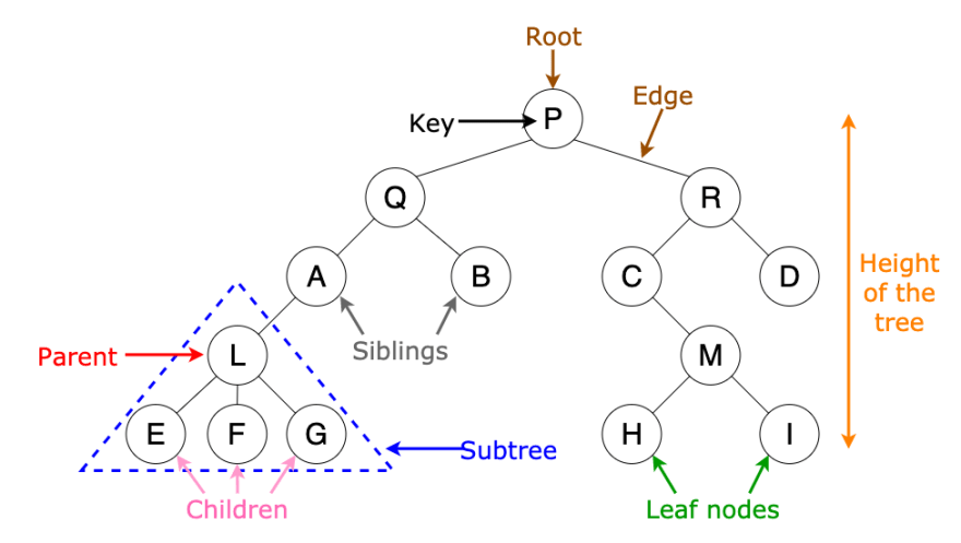 example of binary tree with labelled parts
