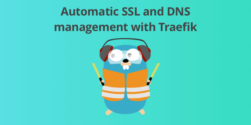 Automatic DNS and SSL management with Traefik - DEV