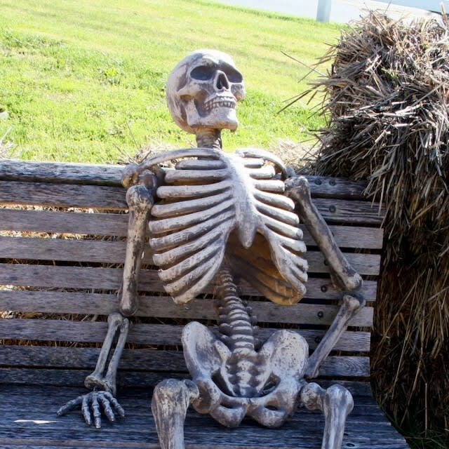A skeleton sitting on a bench.