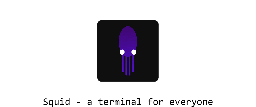 Cover image for Squid, a terminal for everyone