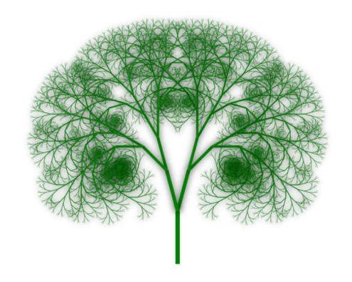 Final Fractal Tree