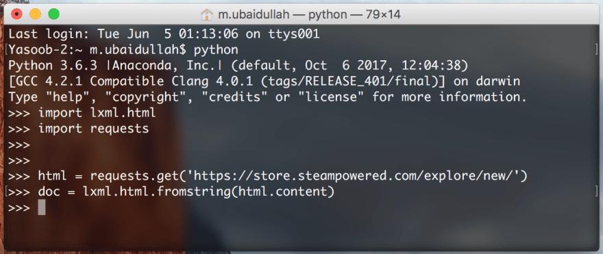 Python Terminal