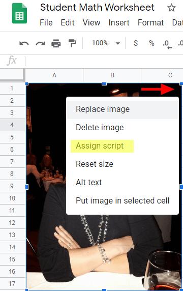 assign script