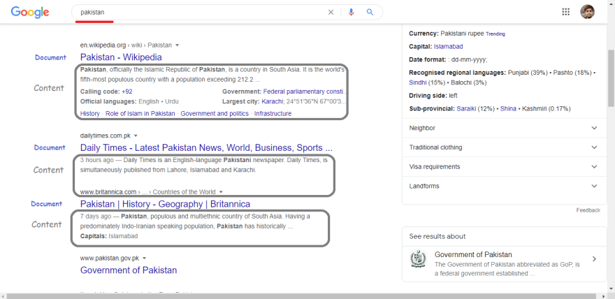 Pakistan goole search