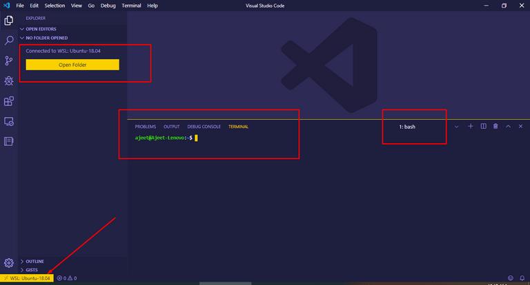 VS Code in WSL