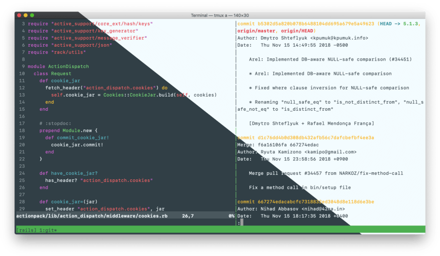 Vim and git log in Terminal app, with Dim as the Vim colorscheme, appsignal.terminal as the terminal theme, and SF Mono 14pt (with a line spacing of 1.2) as the font.