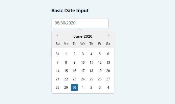 basic date input
