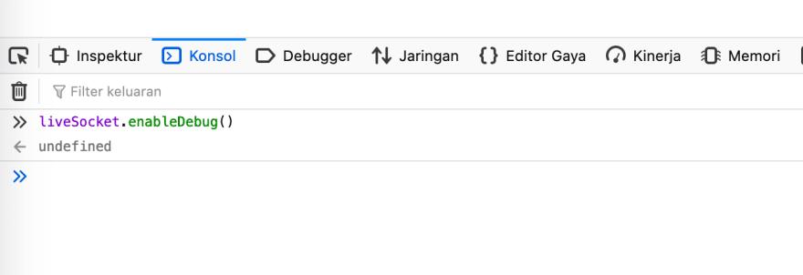 Contoh liveSocket.enabledDebug()