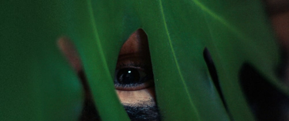 Cover image for Android Views: Peek-A-Boo