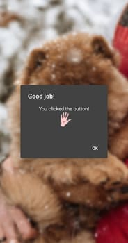 Example picture that shows a blurred background image of a dog behind dialog