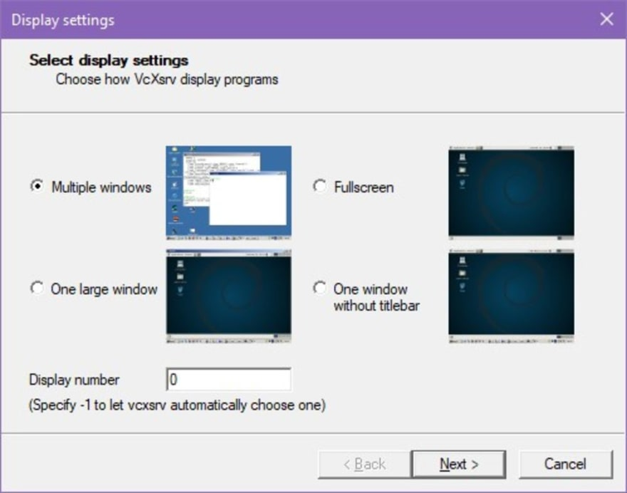 "A screenshot displaying four possible display settings, with the ""Multiple Windows"" option checked"