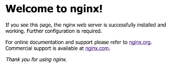 Nginx-default-home-page