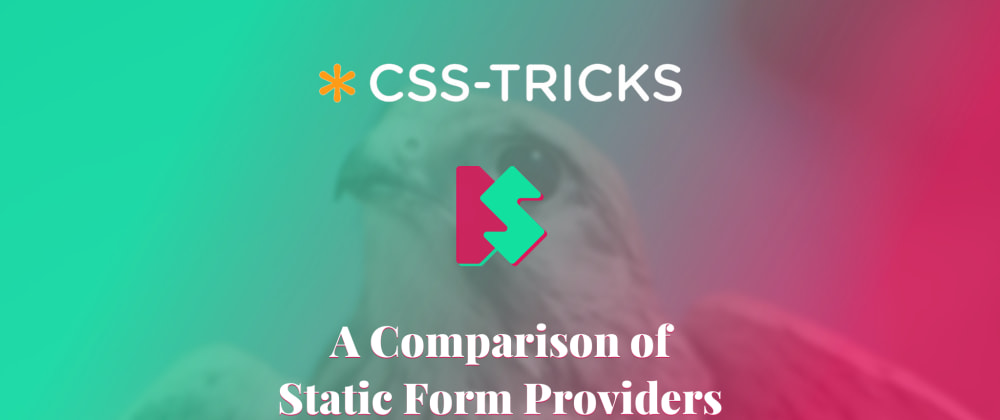 Cover image for A Comparison of Static Form Providers