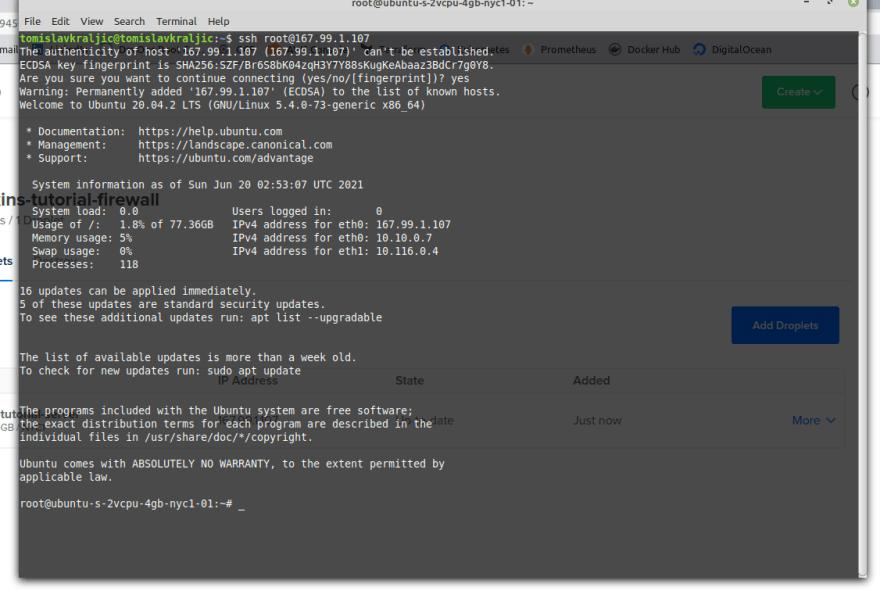 Inside remote server via terminal