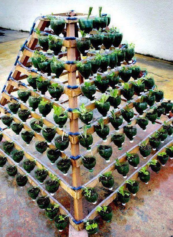 Vertical Garden pyramid