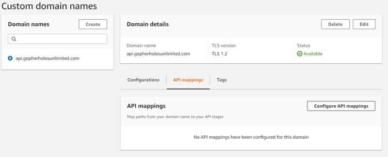 API mapping the new custom domain