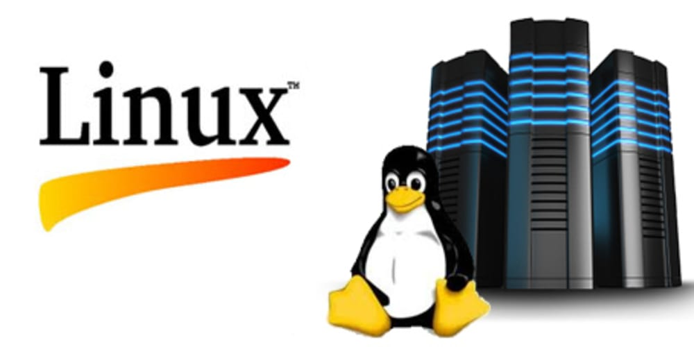 Which is the best Linux server distro?