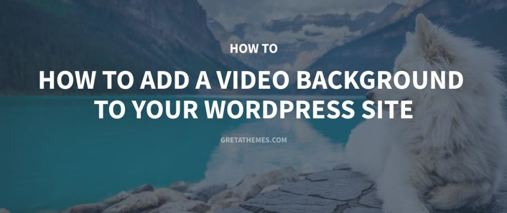 Cover image for How to Add Video Background to Your WordPress Website