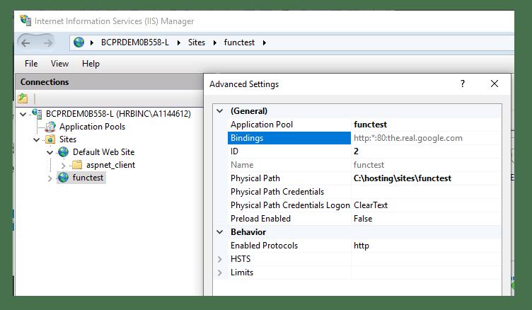 Plain empty site in IIS