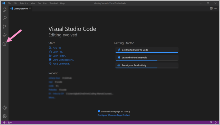 Visual Studio Code, showing the Extensions panel button