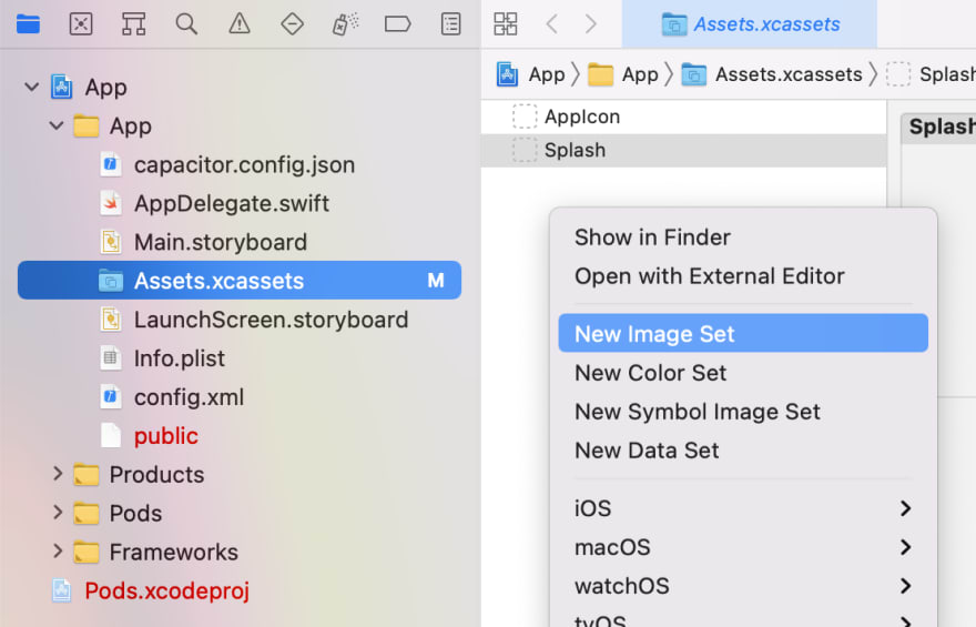 Create a new splash screen in Xcode