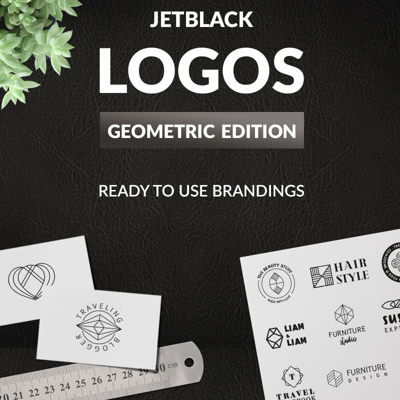 30 Pre-made Geometric Logos