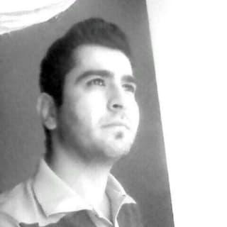 muhamad zolfaghari profile picture