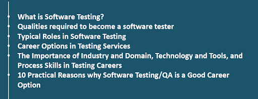 Software Career Option