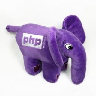 PHPWomenBR logo