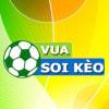 vuasoikeoclub profile image