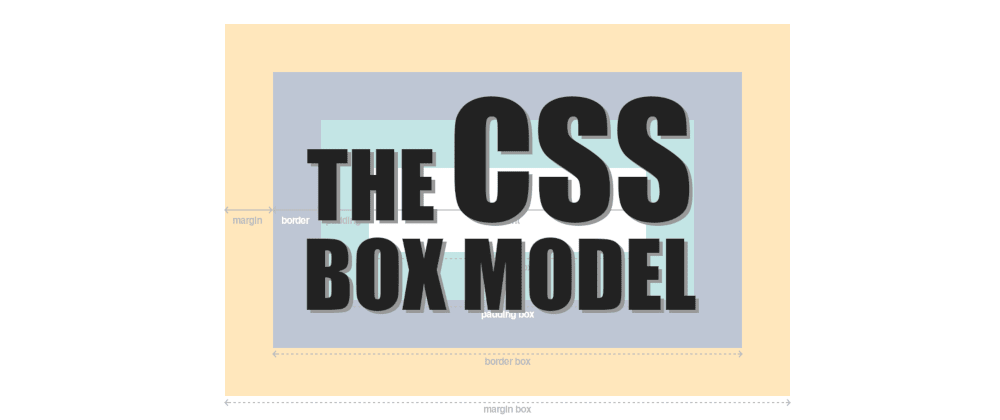 Cover image for The CSS Box Model