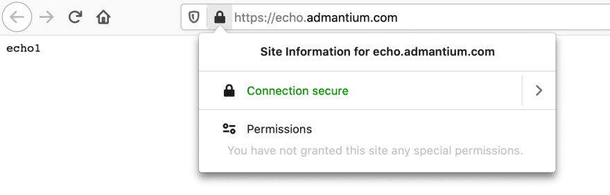 echo_server_in_browser1