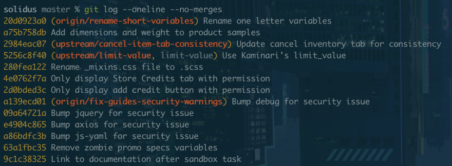 A terminal screenshot showing the output of the above command on the Solidus project