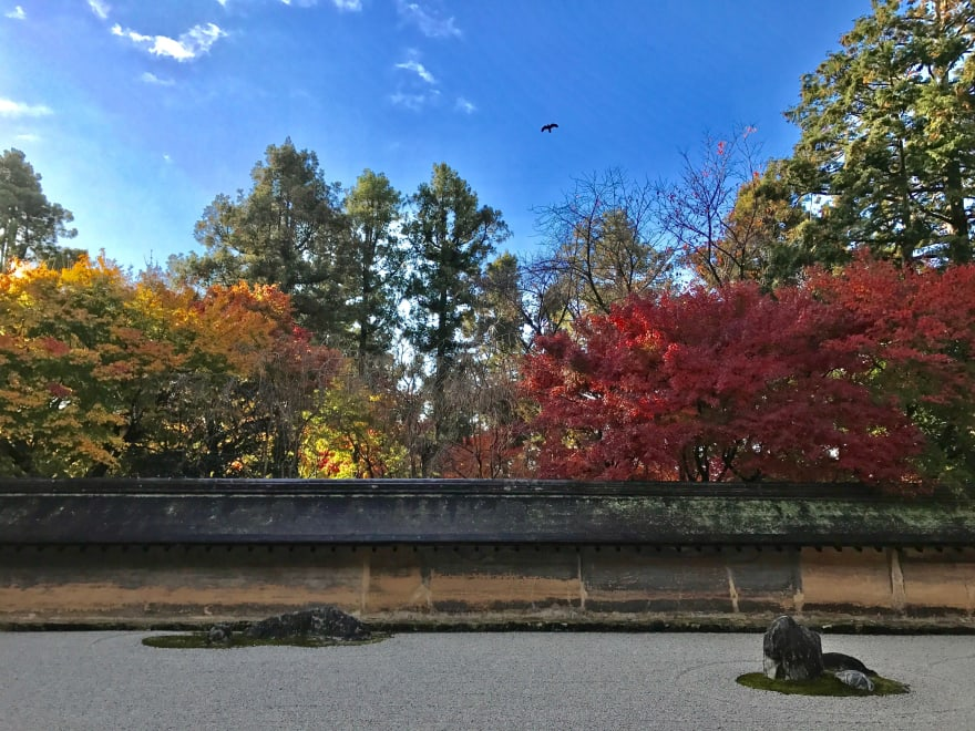 A photo of Ryoan-ji Rock Garden in autumn