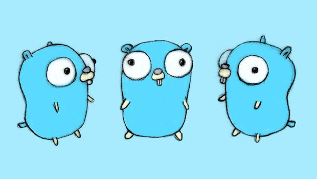 golang gopher slice literal