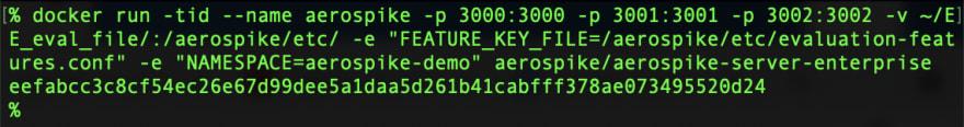 Screencap of Docker Run EE