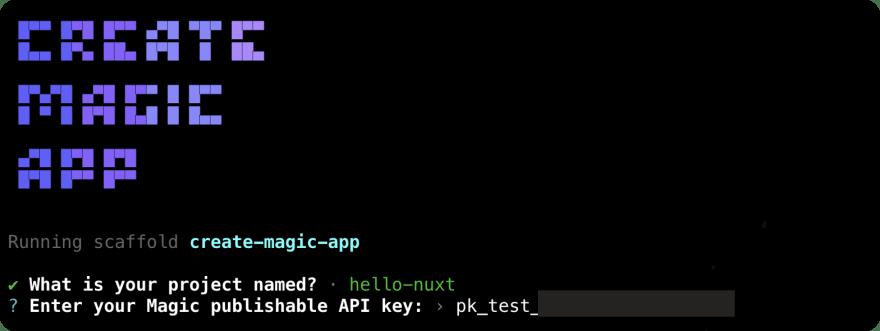Entered Magic Test Publishable API key