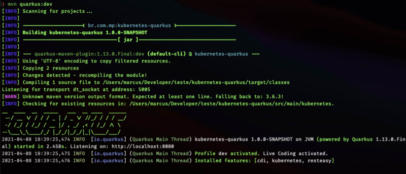 Running Quarkus application by command line