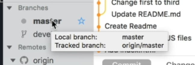 Double-click the master branch to checkout the master branch