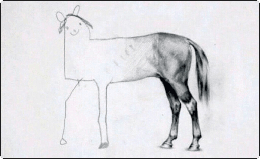Drawing of a horse with a detailed back-end, but a low-quality front-end