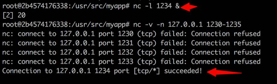 CAPTURE-2020_03_09_basic-networking-tool-netcat.org_20200309_155930.png