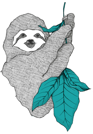 Sloan, the sloth mascot