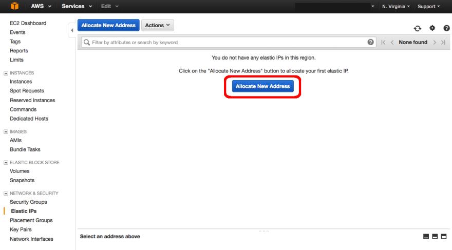 allocate new IP address