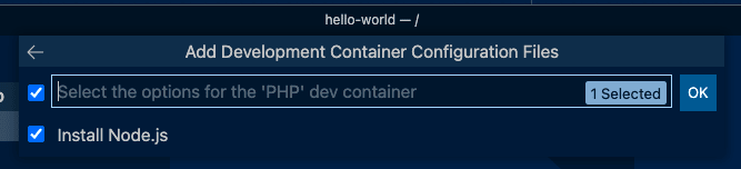 Dev Container Install Node