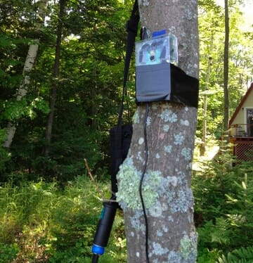 raspberry pi in the woods
