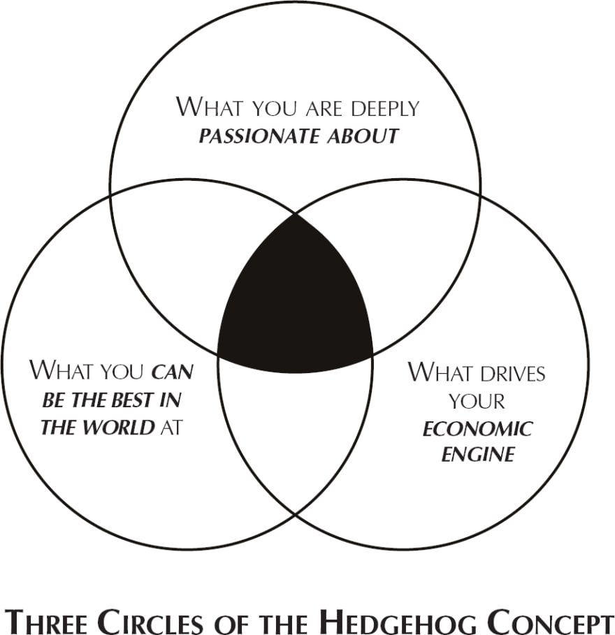 Hedghehog Concept from publicism.info