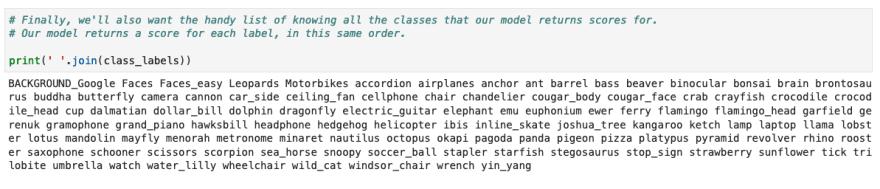 image label classes